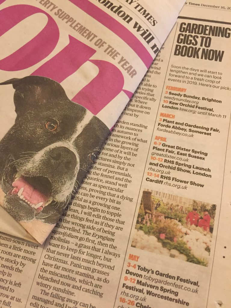 Toby's Garden Festival featured in the Sunday Times Home supplement on 16th December