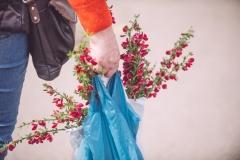 Powderham-Flower-Matt-Austin-209