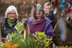 2017-04-28-Toby-Garden-Fest-Powderham-EdOvenden-036