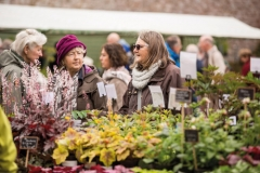2017-04-28-Toby-Garden-Fest-Powderham-EdOvenden-053