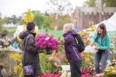 2017-04-28-Toby-Garden-Fest-Powderham-EdOvenden-241