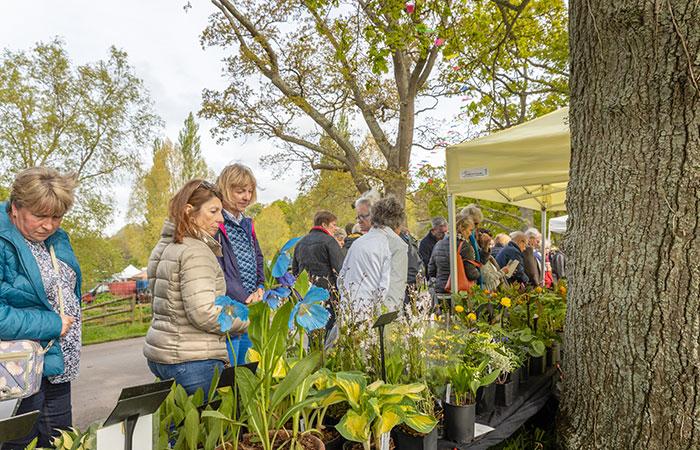2019-05-03-2019-Toby-Garden-Fest-Powderham_Castle-012