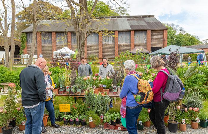 2019-05-03-2019-Toby-Garden-Fest-Powderham_Castle-074