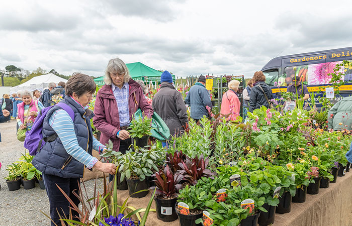 2019-05-03-2019-Toby-Garden-Fest-Powderham_Castle-077