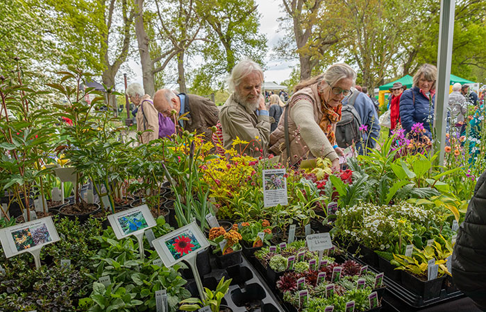 2019-05-03-2019-Toby-Garden-Fest-Powderham_Castle-085