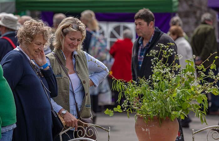 2019-05-03-2019-Toby-Garden-Fest-Powderham_Castle-131