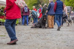 2019-05-03-2019-Toby-Garden-Fest-Powderham_Castle-071