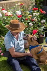 Dogs are welcome at Toby's Garden Festival